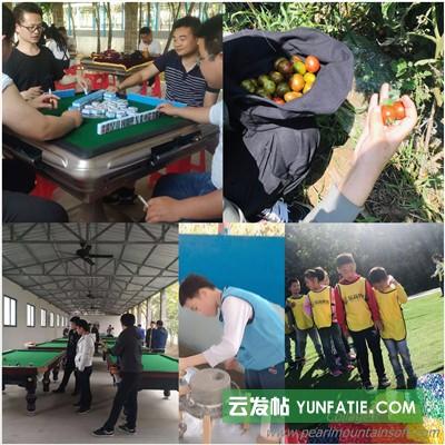 黄陂小学生出游欢乐时光假期带孩子来户外农庄也欢乐