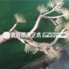 大型仿真雪松马尾松商场装饰高端松树摆新中式造景松树实木雕刻树