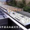 金桔清洗机 芒果连续式清洗流水线